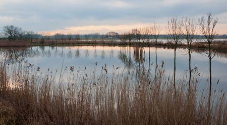 Dutch National Park De Biesbosch in the end of the winter season. Stock Photo - 12680832