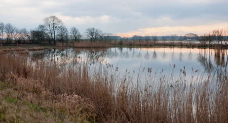 Dutch National Park De Biesbosch in the end of the winter season. Stock Photo - 12680835