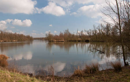 Small lake in the Dutch National Park De Biesbosch (North-Brabant) with bare trees and reflections in the smooth water surface. Stock Photo - 12680858