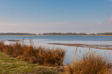Dutch National Park De Biesbosch in winter colors. Stock Photo - 12680856