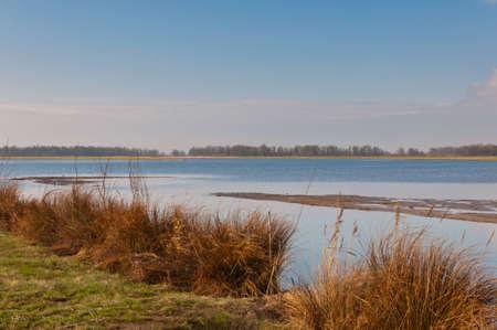 Dutch National Park De Biesbosch in winter colors. Stock Photo - 12680856