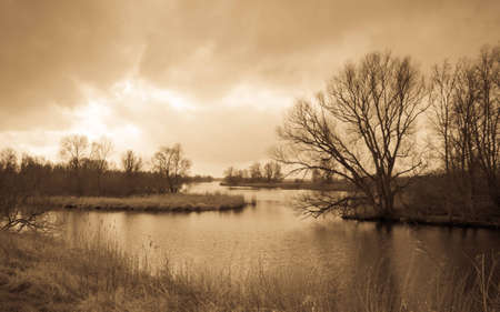 National Park De BIesbosch in the Netherlands. The winter season is almost over and spring is coming soon already. Antique light version. Stock Photo - 12680860