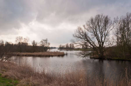 National Park De BIesbosch in the Netherlands (North-Brabant). The winter season is almost over and spring is coming soon already. Stock Photo - 12680865
