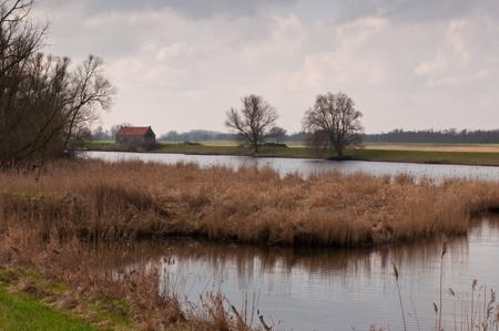 View at National Park De Biesbosch in the Netherlands. Stock Photo - 12680881