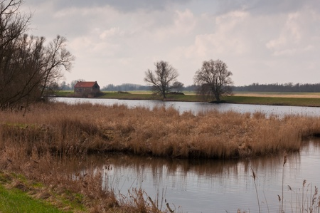 View at National Park De Biesbosch in the Netherlands. Stock Photo - 12680881