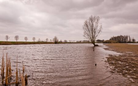 Flooded Dutch polder at the end of a cloudy day. The normal colors of the landscape are hardly visible. photo
