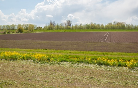 Colorful Dutch landscape with a plowed field in springtime. Stock Photo - 13302418