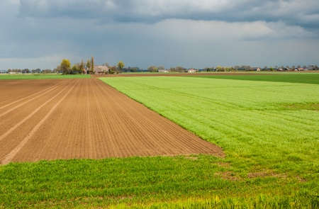 Colorful landscape in the Netherlands in bright sunlight just before the big rain shower erupts. photo