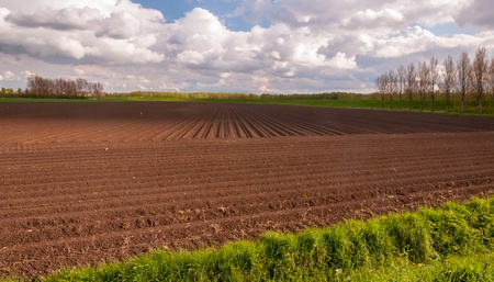 Landscape in the Netherlands after planting potatoes. Stock Photo - 13362666