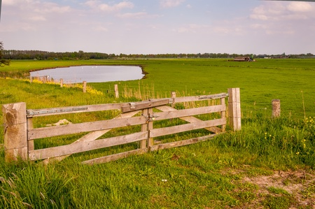 pasture fence: Dutch landscape with a natural pond and in the foreground a wooden entrance gate