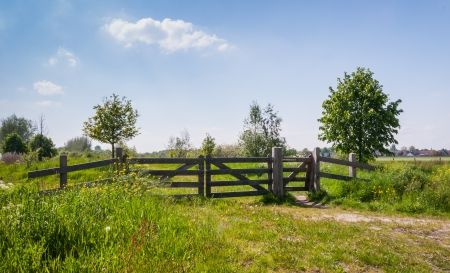 Wooden gate in a colorful field at the edge of a Dutch village.
