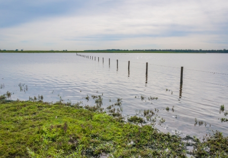 A fence of wooden poles and barbed wire in a flooded Dutch older area  photo
