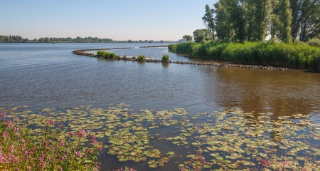 River with floating water lily leaves and buds and a curved dam of basalt rocks  photo