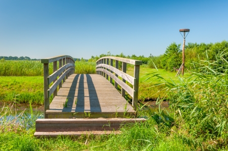 Small wooden bridge in a Dutch nature reserve  Stock Photo - 14626620