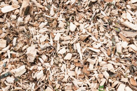 Detailed view on woodchips from shredded trees  photo