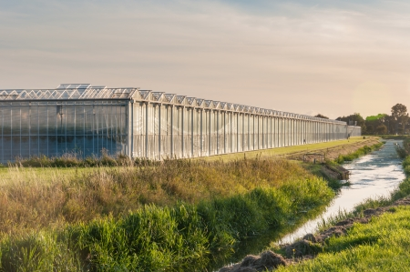 Outside of a  large greenhouse reflecting in late evening sunlight