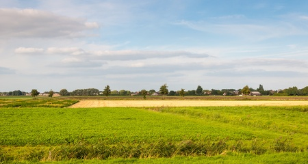 Colorful wide and flat landscape in the Netherlands. Its is summer now. Stock Photo - 15425125