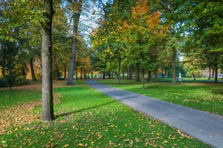 A narrow path through a park with beautiful trees in autumn colors  Stock Photo - 15973020