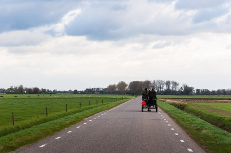 road autumnal: Couple drives in a rustic carriage with a horse on a lonely road in a rural Dutch autumnal landscape.