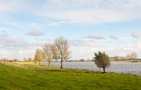 Colorful river landscape with already partially bare trees in the Netherlands. photo