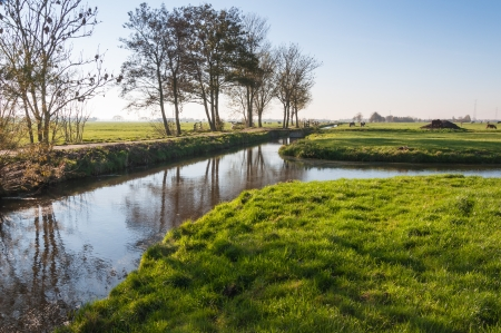 Dutch landscape with meadows , ditches and trees in low autumnal sunlight. photo