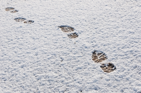mud and snow: Shoe prints in a thin layer freshly fallen snow