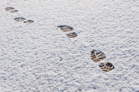 Voetafdrukken in een dun laagje vers gevallen sneeuw