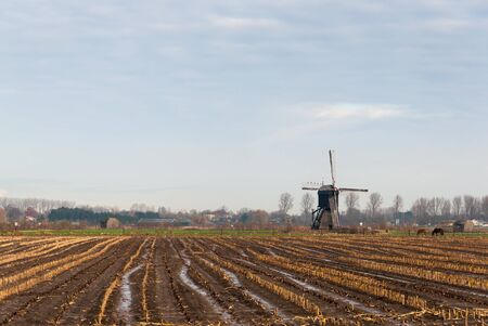 Farmland with an old polder windmill at the edge of a village in the Netherlands. photo