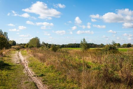 Sand path in a rural Dutch summer landscape with nice white clouds on the blue sky. Stock Photo - 17023375