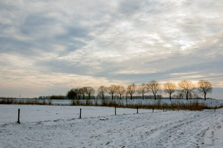Wintry landscape in the Netherlands early in the morning Stock Photo - 17190421