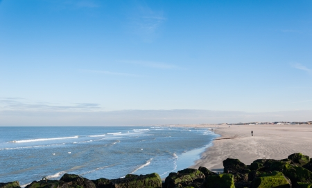 View at the beach and the North Sea in the Netherlands on a sunny day in winter  photo