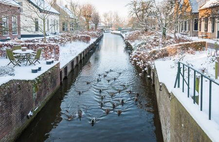 Duck swimming in the canal of a small historic Dutch village covered with snow. Stock Photo - 17406086