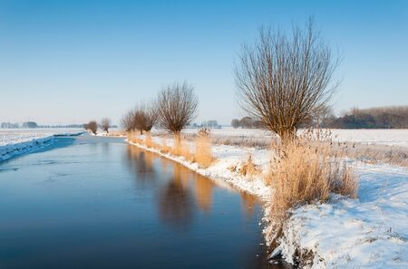 Nederlandse winter landschap met de reflectie van de bomen en het riet op de bevroren wateroppervlak van de sloot. Stockfoto