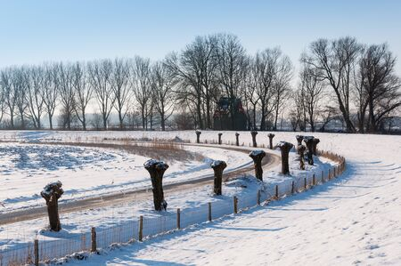 Rural winter landscape with a curved country road, fence and a row of pollarded willows. photo