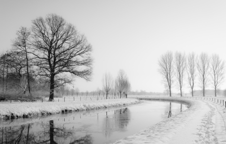 disappears: A curved river disappears into the foggy and wintry background.