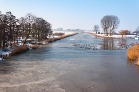 Dutch polder landscape in winter with a frozen river and ducks swimming in the holes. Stock Photo - 17731484