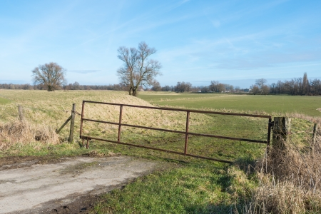 Rusty iron gate in a Dutch agricultural landscape  photo
