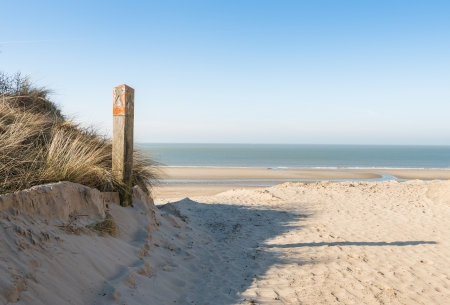 Dune, beach and sea in the Netherlands on a sunny day in spring. photo