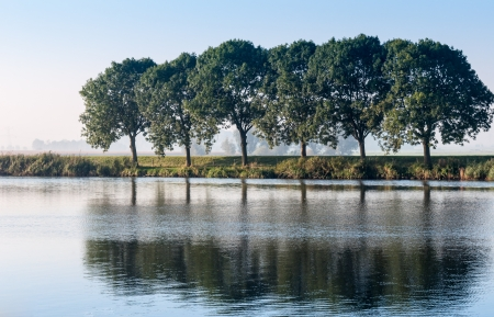 Trees and their reflections in a Dutch rural landscape. photo