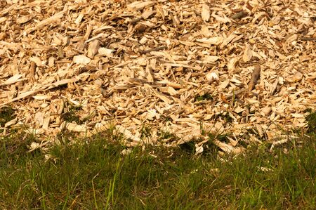 Closeup of a heap of woodchips dumped in the grass Stock Photo - 19134311