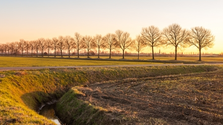 Curved ditch in a Dutch countryside at dusk. photo