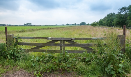 Overgrown wooden gate with padlock in a rural landscape with railroad tracks. photo