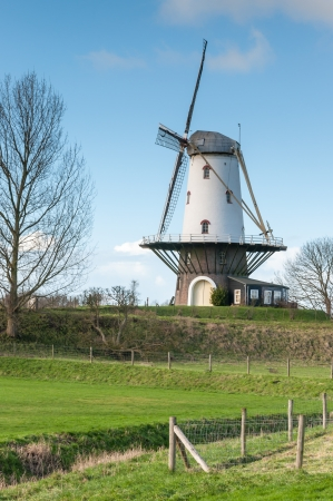 Historic windmill in the Netherlands in a typical polder landscape  photo