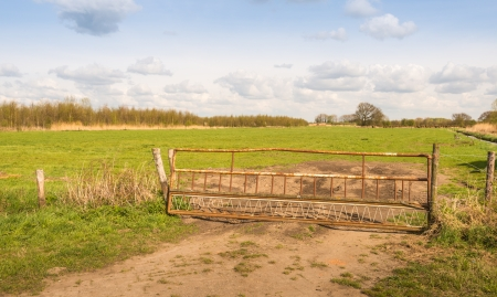 Closed gate at the entrance to the meadow in the Dutch polder area. photo