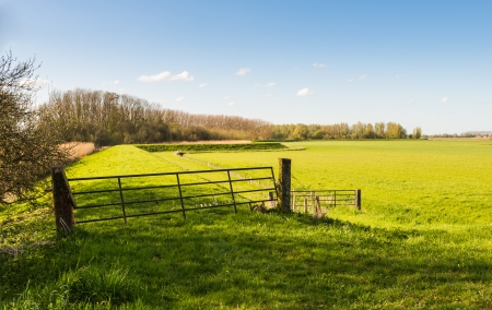 Old and rusty iron gate in a sunny landscape in springtime. photo
