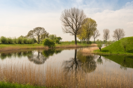 Kaal en ontluikende bomen weerspiegeld in de spiegel gladde wateroppervlak. Stockfoto