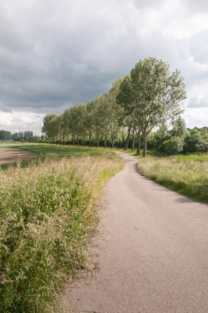 Dramatic sky in a rural landscape with a meandering path and a row of trees. photo