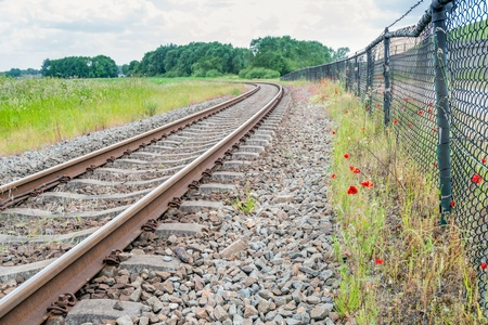 Weathered green iron fence and red blooming poppies beside curved rusty rails to the infinite. photo