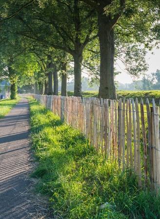 back lighting: Wooden fence in early morning back lighting. Stock Photo