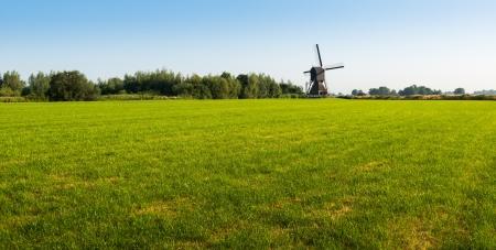 Zonnige Nederlandse landschap in de zomer met groen gras en een historische molen. Stockfoto
